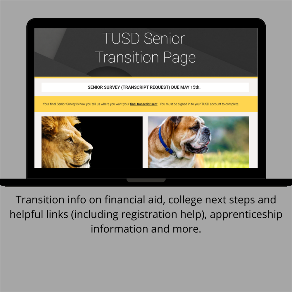 Senior Transition Website